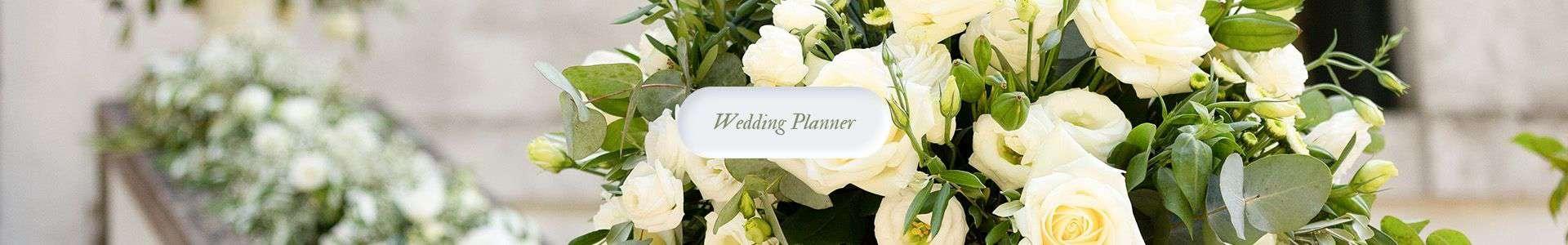 Wedding Planner Rovigo